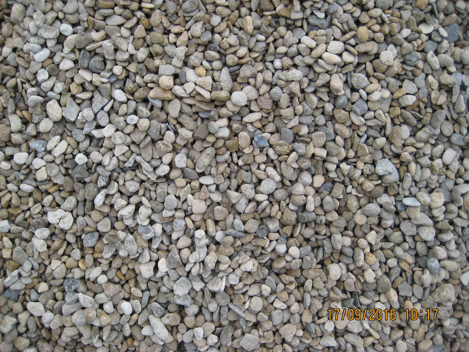 10 mm shingle